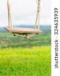 Empty Wooden Swing In Green...