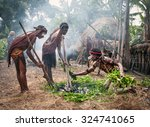 papua province  indonesia  dec... | Shutterstock . vector #324741065