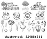 set of vintage retro logo.... | Shutterstock .eps vector #324886961