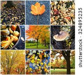 collage of nine autumn nature... | Shutterstock . vector #324895235