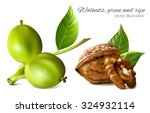 gren and ripe walnuts with... | Shutterstock .eps vector #324932114
