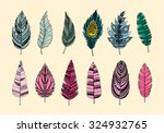 set of ethnic feathers.... | Shutterstock . vector #324932765
