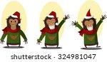 set of monkey. the symbol of... | Shutterstock .eps vector #324981047