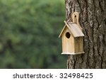 Bird House On A Pine Tree