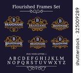 vintage collection frames... | Shutterstock .eps vector #325009289
