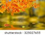 Beautiful Nature Autumn...