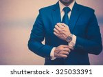 professional businessman in a... | Shutterstock . vector #325033391
