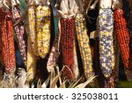 Colored Indian Corn In Autumn