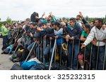 obrezje  slovenia   september... | Shutterstock . vector #325232315