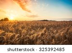 magic sunrise with wheat field... | Shutterstock . vector #325392485