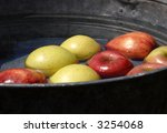 Apples In A Pail Of Water