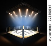 a 3d render illustration of... | Shutterstock . vector #325500569