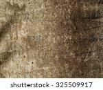 Palm Tree Bark Texture...