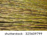 river green cane harvest... | Shutterstock . vector #325609799