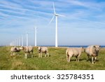 Long Row Dutch Wind Turbines...