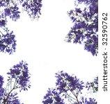 Violet Flowers Frame