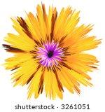 flower   Shutterstock . vector #3261051