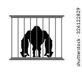 Gorilla In Cage. Animal In  Zo...