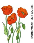 hand drawn red poppies. elegant ... | Shutterstock .eps vector #326127881
