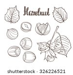set of detailed hand drawn... | Shutterstock .eps vector #326226521