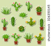 cactuses and plants abstract... | Shutterstock .eps vector #326350145
