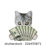 cat holding money | Shutterstock . vector #326455871