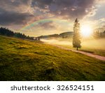 fir tree in fog by the road through  hillside meadow in high mountains in evening light - stock photo