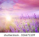 Lavender Field Over Sunser Sky...