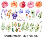 colorful floral collection with ... | Shutterstock . vector #326701487