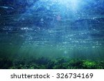 Small photo of underwater scenery, algae, clean clear water, mountain river cleanliness