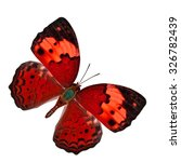 beautiful rustic butterfly... | Shutterstock . vector #326782439