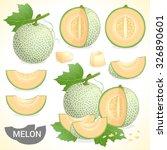 Set Of Cantaloupe Melon Fruit...