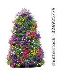 Flowering Petunia In Pots On...
