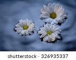floating flowers | Shutterstock . vector #326935337