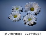floating flowers | Shutterstock . vector #326945384