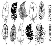 Rustic Decorative Feathers...