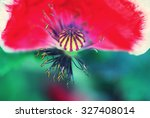 close up shot of a poppy flower ... | Shutterstock . vector #327408014