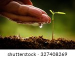 male hand watering young tree... | Shutterstock . vector #327408269
