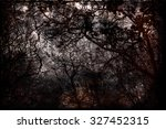 Autumn Grunge  Bare Trees On A...