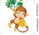 Cute Baby Monkey With Banana...