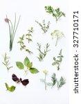 fresh herbs | Shutterstock . vector #327710171