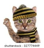 Stock photo cute cat print animal cartoon character 327774449