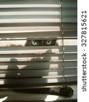 cats eyes peering through a... | Shutterstock . vector #327815621