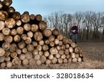 Young Lumber Engineer With...