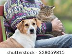 Stock photo close up of cute dog standing on bench next to his owner who holding cat in the lap 328059815