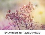 Summer Flowers Meadow. Cross...