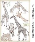 hand drawn giraffe vector set | Shutterstock .eps vector #328306271