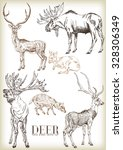 Hand Drawn Deer Vector Set