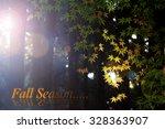 maple tree in autumn  japan | Shutterstock . vector #328363907