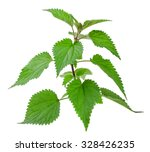 Nettle Isolated On A White...